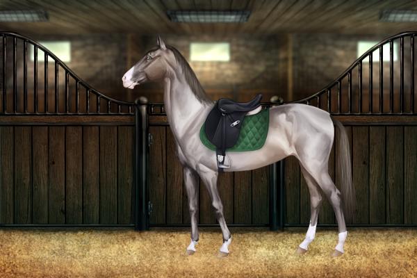 pferde tierarzt spiele kostenlos