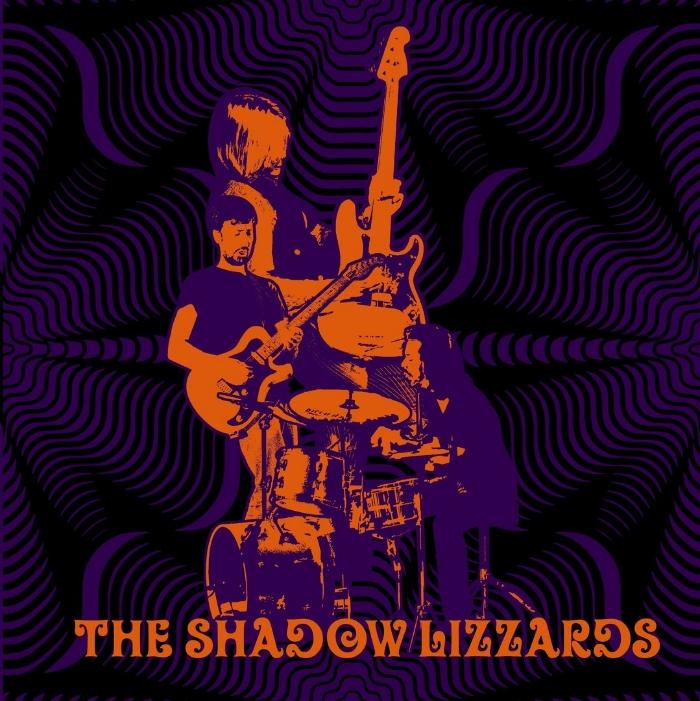 Rezension_Shadow_Lizzards_Cover.jpg