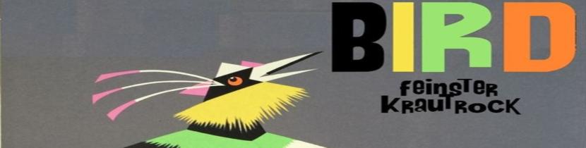 Bird_Header.jpg
