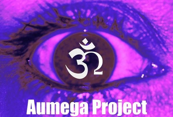 Netlabel_aumega5466363.jpg