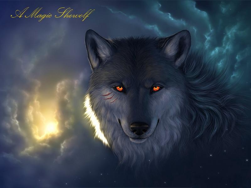 Magic_Shewolf_Cover.jpg