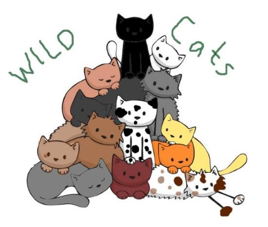 Thewildcats_baaaaambaaaaaam2.jpg