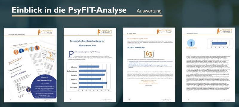 PsyFIT-Analyse.png