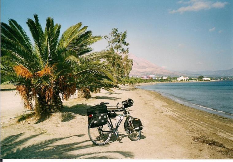 Rad unter Palmen.jpg