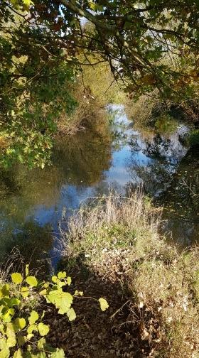 Herbstbilder_2.jpg