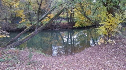 Herbstbilder_3.jpg