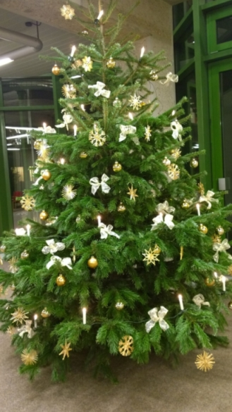 KT-Weihnachtsbaum.jpg