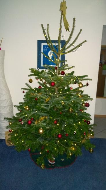 Weihnachtsbaum_Steinis.jpg