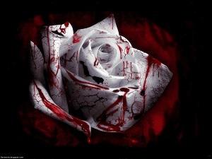 Blutstatus.jpg