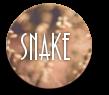 snakespringbutton.png