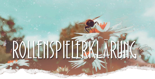 BannerRSErkl.png