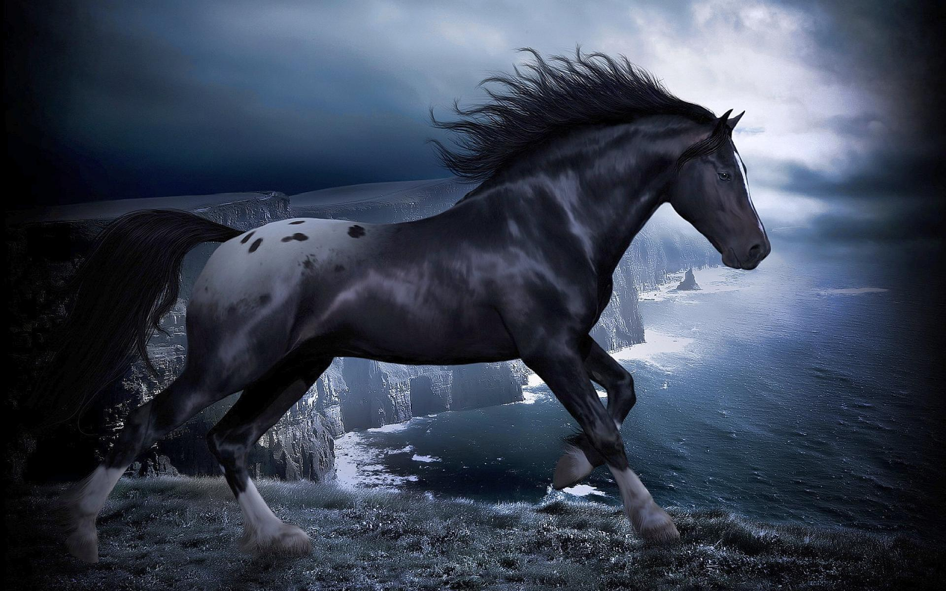 black-horse-picture-cool-2041-background-wallpapers.jpg