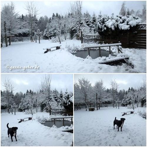 winterjan14.jpg