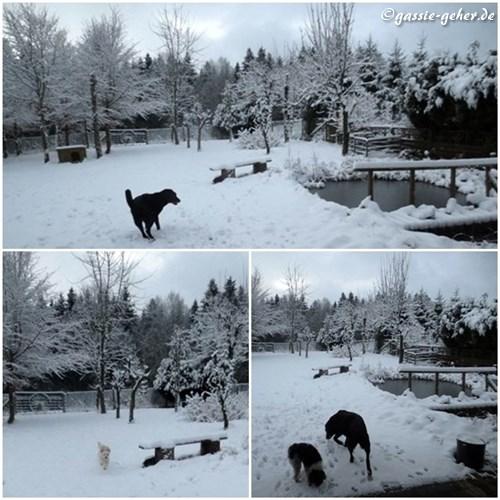 winterjan140.jpg