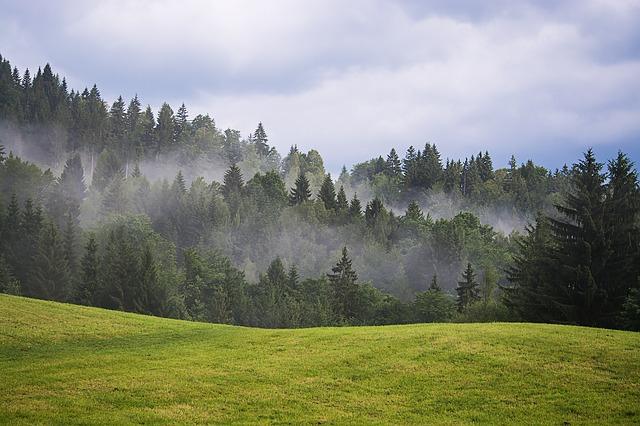 landscape-2422901_640.jpg