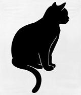 schwarze-Katze.jpg