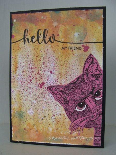 Hello-Pink-Cat-CG0118W.jpg
