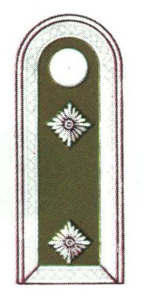 oberfeldwebel.png