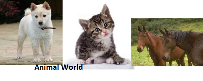 animal_world.png