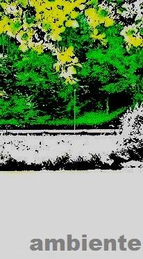 PICT0011klein.jpg