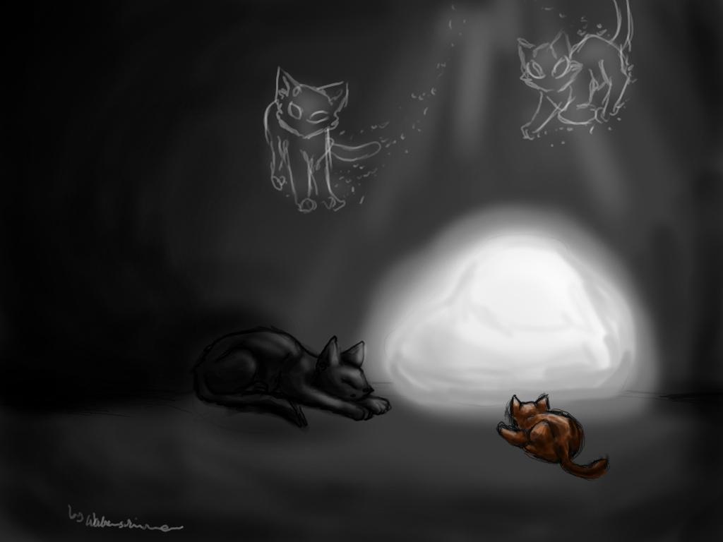 Mondstein-Malwettbewerb-bei-wildkatzen.jpg