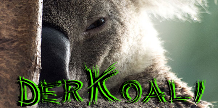 Koalabanner.jpg